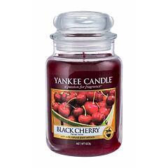 Vonná svíčka Yankee Candle Black Cherry 623 g