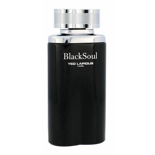 Ted Lapidus Black Soul EDT 100 ml pro muže