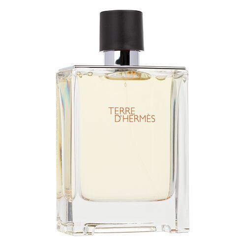 Hermes Terre D´Hermes EDT 100 ml pro muže