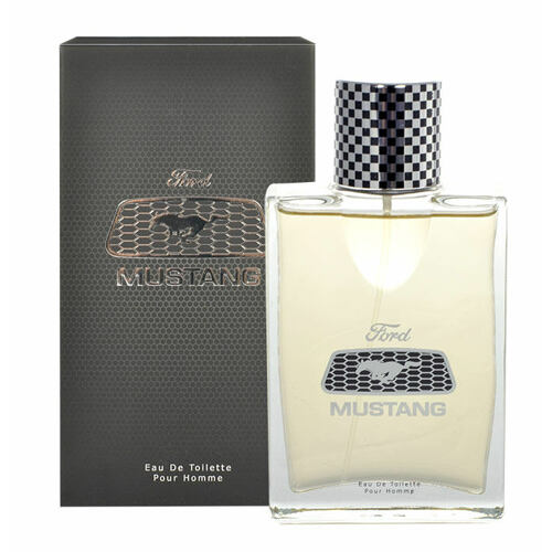 Ford Mustang Mustang EDT 100 ml Tester pro muže